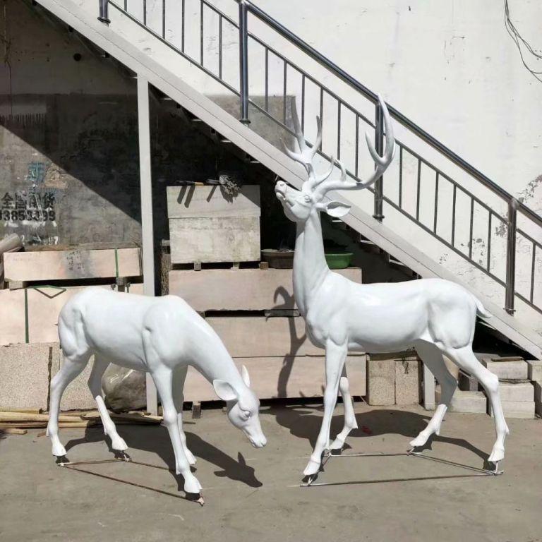 白色小鹿4