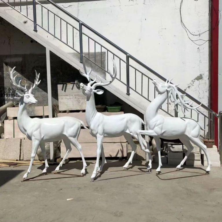 白色小鹿5